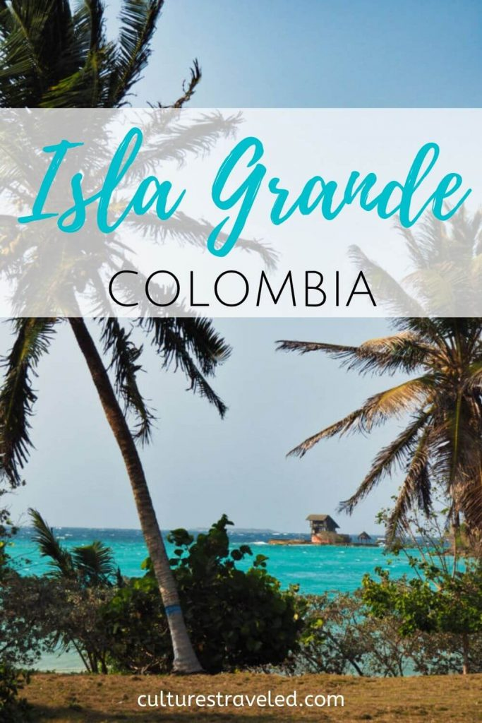 An image of Palm Trees with the words Isla Grande, Colombia to save to Pinterest.